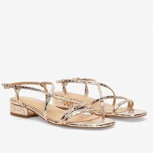 Express Strappy kitten heel sandal metallic gold